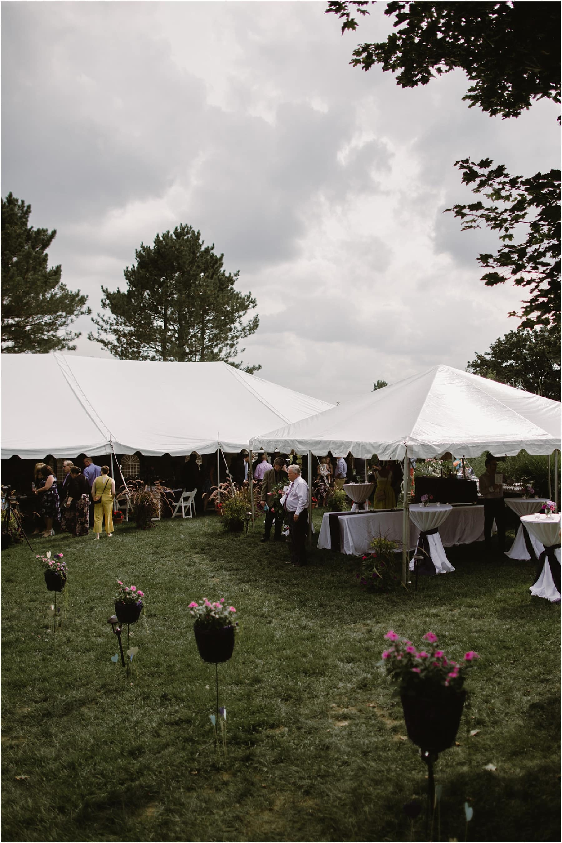Intimate Backyard Wedding Ann Arbor